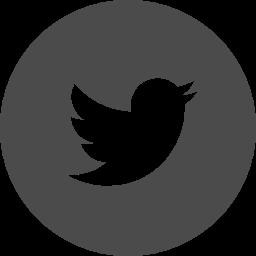 Twitter logo free icon 2